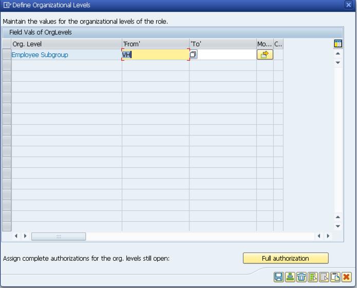 Define Organizational Levels in SAP PFCG transaction