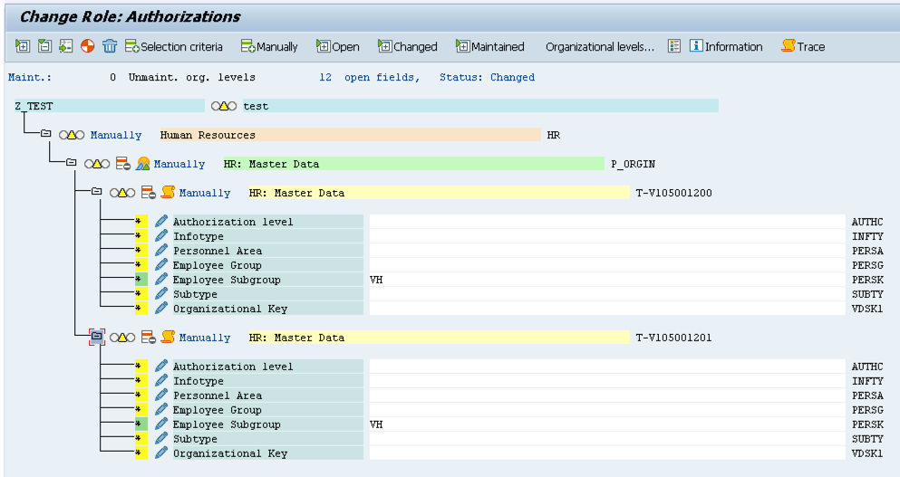 Example of Organizational Levels in SAP PFCG transaction